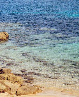 Beach and reef walking