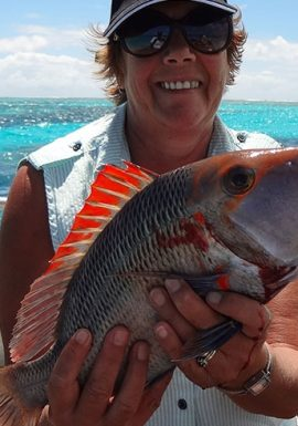 reef fishing on the southern great barrier reef